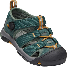 Keen Newport H2 Sandals Kids green gables/wood thrush